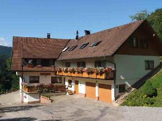 Vacation Apartment in Bad Peterstal-Griesbach -  (# 8484)