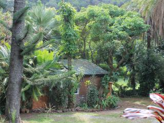 Gingerbread House: Flowers, Forest & Lush Jungle, Makawao
