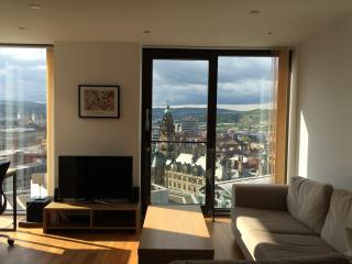 Luxury Apartment in City Centre, Sheffield