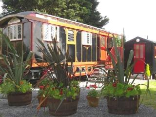 Dolly The Circus Wagon 2153, Rhydlewis