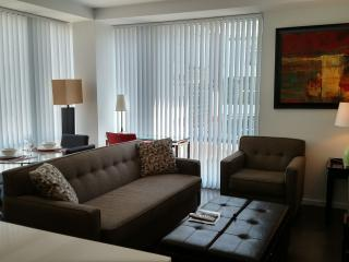 Lux Kendall Square 2BR w/gym, WiFi, Cambridge