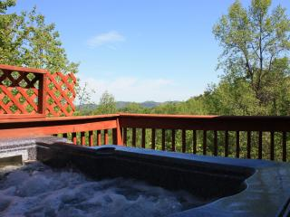 'Biscuits and Gravy' Free WiFi, Cable,Phone, Views, Sevierville