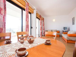 AP ASTERIX (8+2) - with sea view and garden, Selce