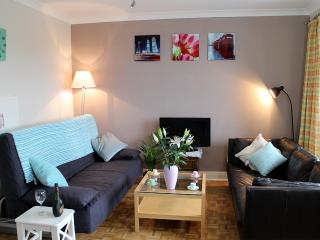 Lovely apartment, well located for Gower and city!, Swansea