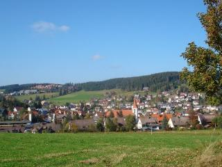Vacation Apartment in Schonach im Schwarzwald - 1 bedroom, max. 4 people (# 6871)