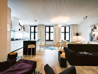 BRAND NEW - Spacious Apt. in the heart of Brussels