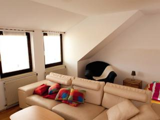 Vacation Apartment in Krems an der Donau - bright, comfortable, active (# 8511)