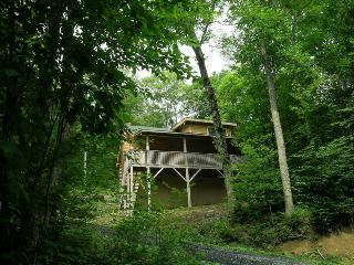 Charming Log Cabin close to Ski Beech, Beech Mountain