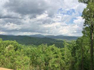 Mountaintop Log Cabin W/Pano View->20 min to dwntn, Asheville