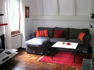Spacious And Newly Renovated Apartment, Zúrich