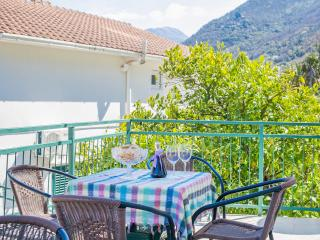 Apartments Daria - One Bedroom Ap. with Balcony 1, Kotor