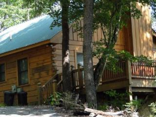 Holly Hollow - charming pet friendly vacation cabin offering great value and fantastic views, Cherry Log