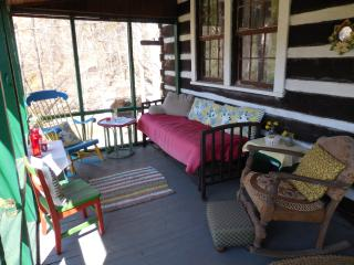 Hummingbird Haven ~ a  rustic cabin you will love., Fairview