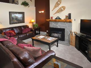 Enjoy this 3 bedroom vacation condo only 150 yards to the Gondola Ski Lift in Lionshead Village., Vail
