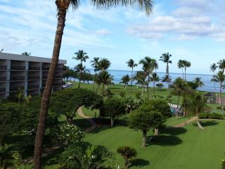 Time Interval For Rent, Kihei