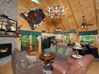 HAKUNA MATATA-Luxurious 2/2-Indoor/Outdoor Pool, Pigeon Forge
