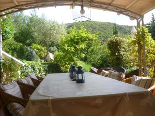 The dining terrace and gardens