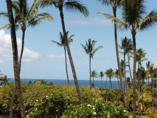 Ocean View, Opposite Great Beach, Remodeled, Clean, Kihei