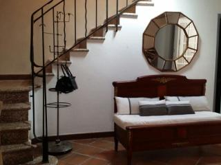 Beautiful city centre townhouse with indoor pool, Avignon