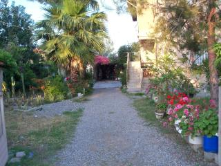Live in a traditional local village, Ortaca