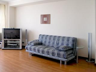 Fully Equipped 1 Bedroom Apartment in Novy Arbat; Moscow, Moscou