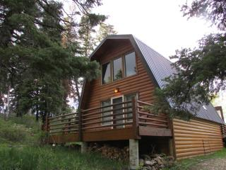 cozy cabin minutes from Park City in the woods