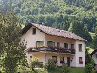 Vacation Apartment in Todtnau - 861 sqft, max. 6 persons (# 8055)