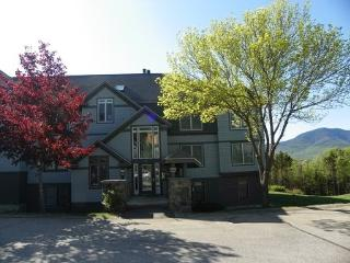 Beautiful Waterville Valley Northface Condo with Mountain Views!