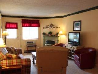 Spacious 1BR condo with Queen bed, fireplace - B1 124B, Lincoln