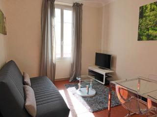 Beautiful flat in Cannes close to Palais & Beaches