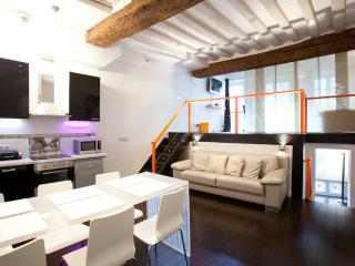 Centrally Located Vacation Apartment in St. Germai, Paris