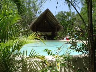 Room Azul 2 pers/Pool and Cenote, Chemuyil