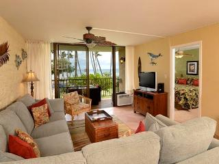 Oceanview 2BD Condo near Maui Aquarium, Maalaea
