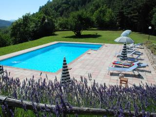 I5.537 - Hus with pool in ..., Marradi