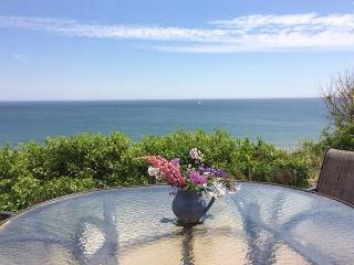 New Listing! Rare Oceanfront Cottage in Eastham!