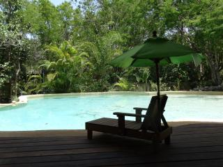 Room Oro 3 pers/Pool and Cenote, Chemuyil