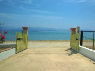 Villa with wonderful garden on the beach in Corfu, Lefkimi