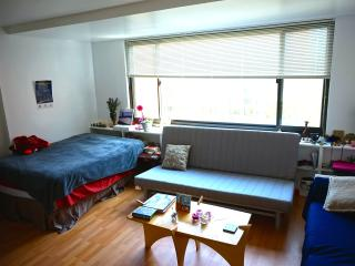 A Cozy Sunny Studio 5mins walking to Rosslyn Metro, Arlington