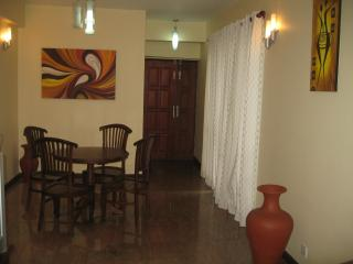Wellington Residencies Fully Furnished Apartment, Colombo