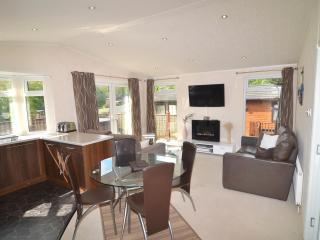 Luxury Timber Lodge with Hot Tub, Paignton