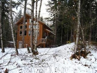 #40 Pet friendly cedar cabin with hot tub + wifi!, Glacier