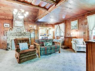 Quintessential cabin in the woods with stunning views, Rhododendron