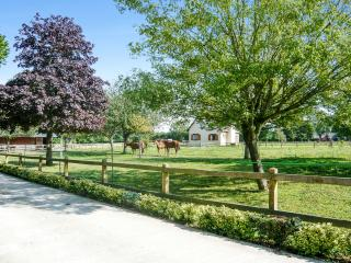 Gîte de la Morelle - Stunning Calvados country house with garden, close to golf and Deauville beach, Quetteville