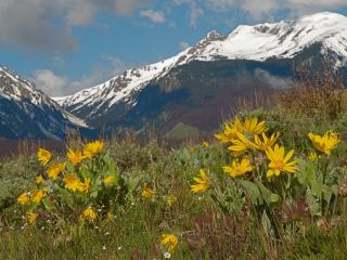 Relaxing Summer Vacation in the Rockies, Silverthorne