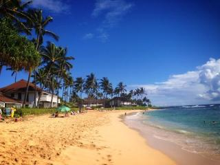 Kiahuna 335-Terrific 1bd condo in beautiful Poipu short walk to spectacular beaches. *Free car with stays 7 nights or more*