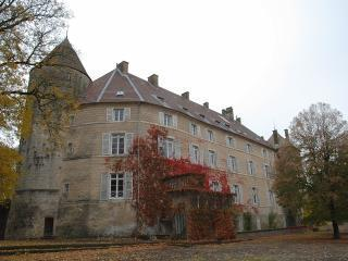 Chambres d'hote - Le Chateau de Frasne, Room 5, Gy