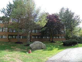 Waterville Valley Condo walking distance to Recreation Department with family fun activities!