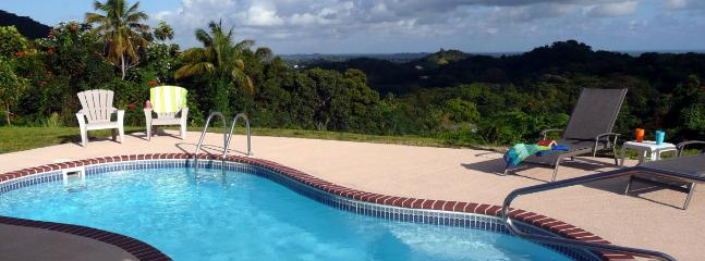 Private Swimming Pool w/ BBQ, fridge, sink, tables & chairs