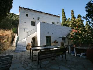Beautiful Family Traditional Villa, Andros Town