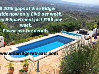 Vine Ridge Retreats, only 1 hour from Malaga, Comares